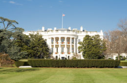 Addobbi natalizi, la Casa Bianca