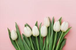 festa della mamma fiori