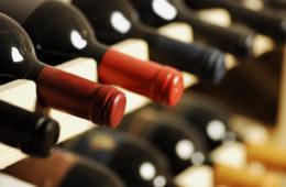 Il vino dei vip in cantina
