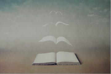 Salone del Libro 2019 book